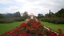 Exposition Park Rose Garden in Downtown L.A.