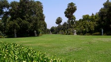 North Vista Lawn at The Huntington Library
