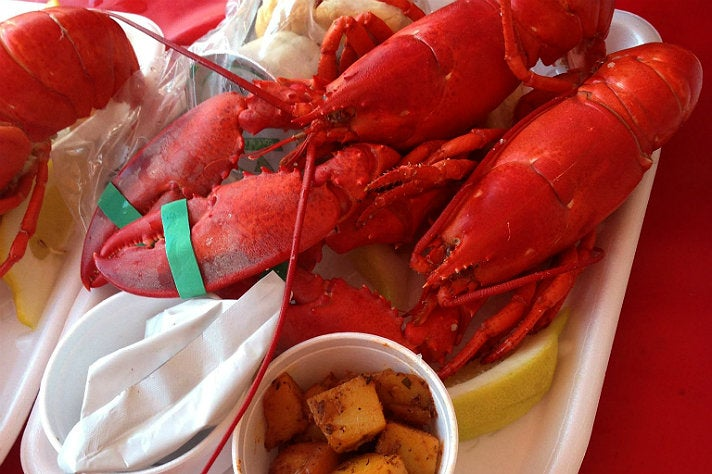 Maine lobster meal at the Port of Los Angeles Lobster Festival